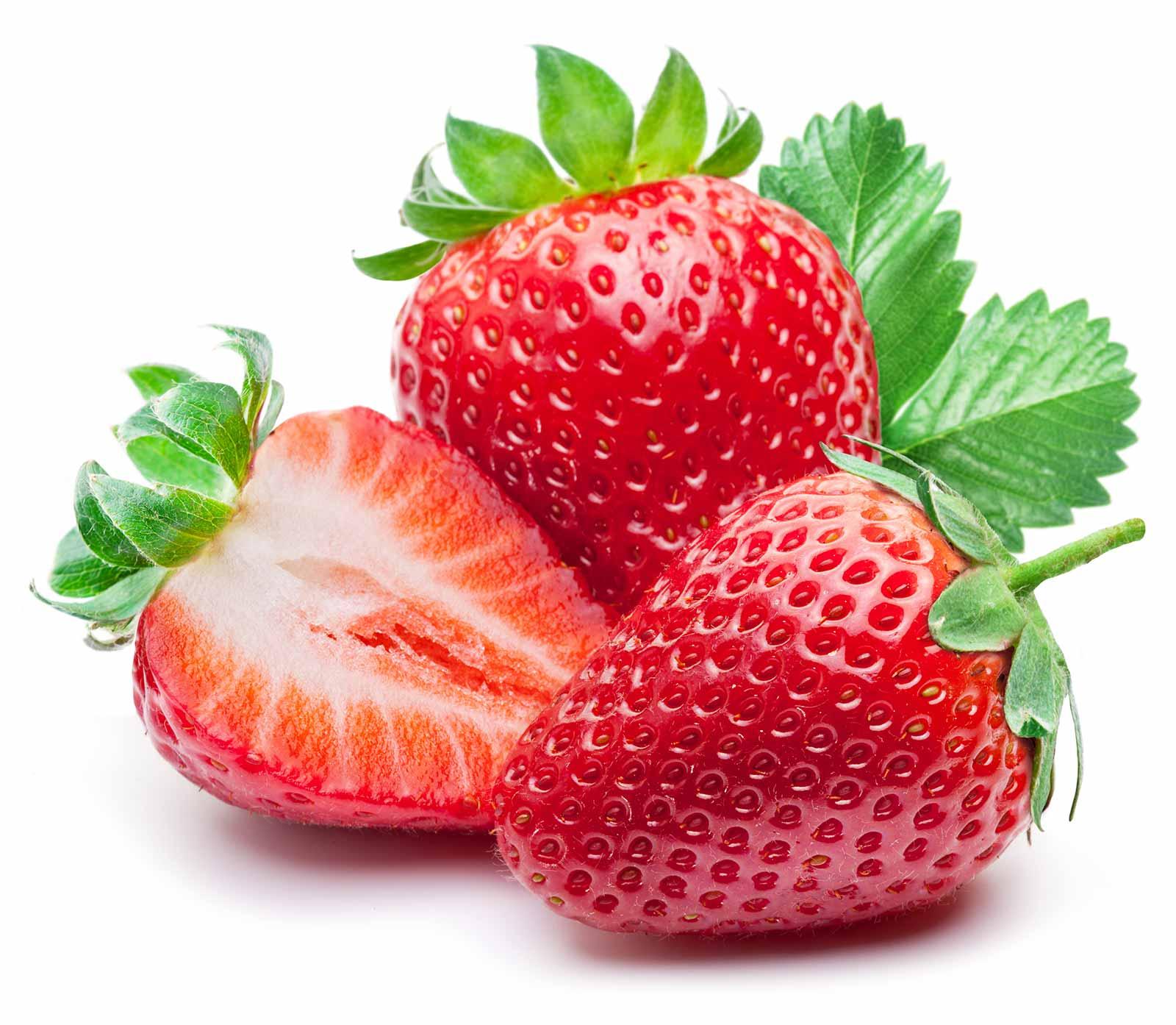 fraises biologiques pour sorbet